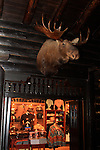 Moose on wall at El Tovar Hotel
