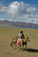 "Early morning Nomads on horseback at the edge of Namtso Lake.Namtso Lake :Namtso, another holy lake in Tibet, is located near Damxung. 4718 meters (15475 feet) above sea level and covering 1900 square kilometers (735 square miles), the lake is the highest saltwater lake in the world and the second largest saltwater lake in China. The snow capped Mt. Nyainqentanglha, considered as the son of Namtso and leader of sacred mountains, soars up to sky beside her. Singing streams converge into the clean sapphire blue lake, which looks like a huge mirror framed and dotted with flowers..The Namtso Lake is held as ""the heavenly lake"" or ""the holy lake"" in northern Tibet. .Respected as one of the three holiest lakes in Tibet, the Namtso Lake is the seat of Paramasukha Chakrasamvara for Buddhist pilgrims. In the fifth and sixth month of the Tibetan calendar each year, many Buddhists come to the lake pay homage and pray. Deep tracks are worn into the lakeshore due to this activity. In history, monasteries stood like trees in a forest around the site, attracting large numbers of pilgrims as eminent monks in Buddhist temples extended Buddhist teachings...Buddhists believe Buddhas, Bodhisattvas and Vajras will assemble to hold religious meeting at Namtso in the year of sheep on Tibetan calendar. It is said that walking around the lake at the right moment is 100,000 times more efficacious than that in normal years. That's why thousands of pilgrims from every corner of the world come to pray at the site, with the activity reaching a climax on Tibetan April 15...Walking around the lake takes a week. Ritual walkers love to burn aromatic plants to raise smoke on Auspicious Island [explain this a little] and throw a piece of hada scarf into the lake as a token of fulfilled wishes. If the scarf sinks, it implies ones wish is accepted by the Buddha; if the scarf flows on the water or only half sinks, it means one has failed to be honest and something unhappy may lie ahead...On the four side"