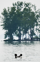 A couple plays in the shallow water of a lake in St. Mary's, Ohio, with a stand of trees on behind them.