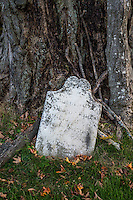 ancient grave stone by a tree trunk, Lennox, Massachusetts, USA