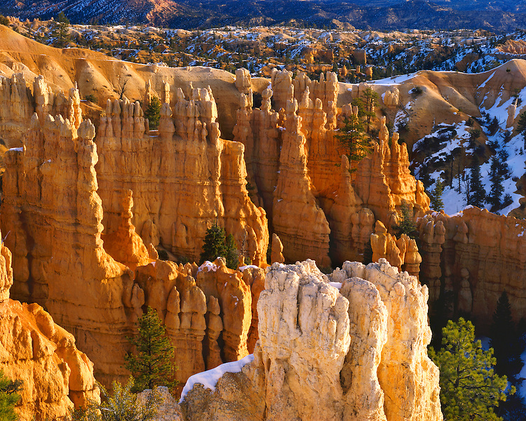 Morning light on eroded formations in Fairyland; Bryce Canyon National Park, UT