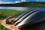 united states, alaska, AK, denali national park,