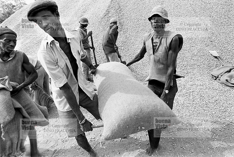 - Senegal, working of the peanuts<br /> <br /> - Senegal, lavorazione delle arachidi