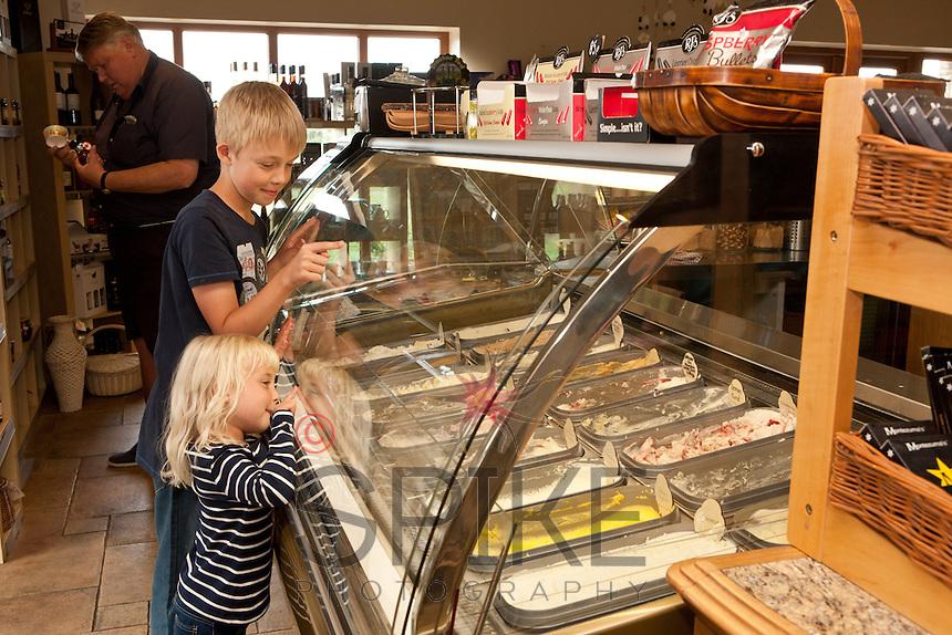 Yummy treats at Thaymar Ice Cream, Bothamsall