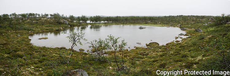 Mann fisker i lite tjern i Gallok. ---- Man fishing in small lake.