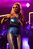 MARY J. BLIEGE (2017)