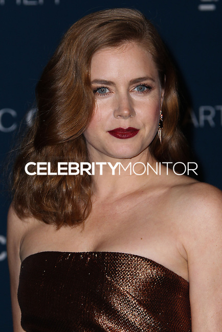 LOS ANGELES, CA - NOVEMBER 02: Amy Adams at LACMA 2013 Art + Film Gala held at LACMA on November 2, 2013 in Los Angeles, California. (Photo by Xavier Collin/Celebrity Monitor)