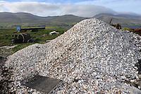 Oyster shells in Cromane harbour.<br /> Photo: Don MacMonagle <br /> e: info@macmonagle.com