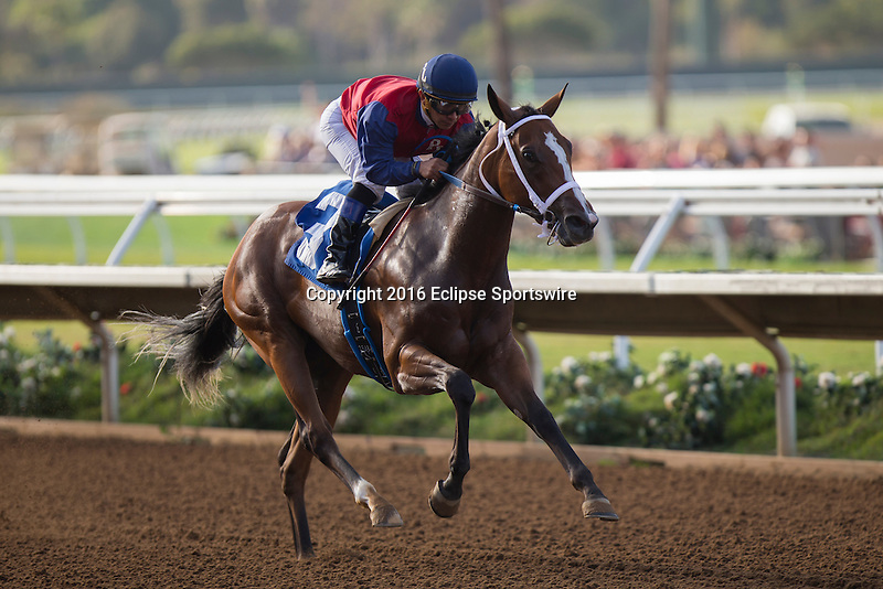 DEL MAR,CA-AUGUST 27: Miss Sunset #3,ridden by Fernando Perez,wins the Generous Portion Stakes at Del Mar Race Track on August 27,2016 in Del Mar,California (Photo by Kaz Ishida/Eclipse Sportswire/Getty Images)