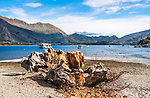 View of Lake Wanaka from the village of Wanaka, which is located at the southern end of the lake.