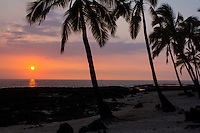 A colorful sunset with silhouetted coconut tree silhouettes along the Kona Coast, Big Island.