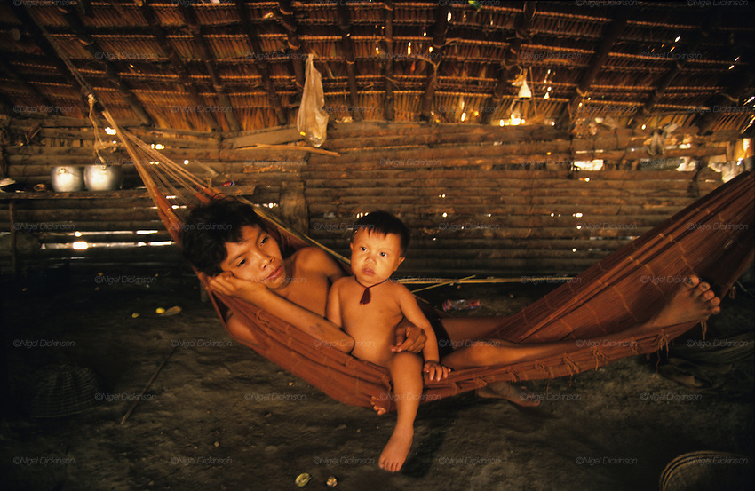 YANOMAMI INDIANS. South America, Brazil, Amazon. Woman with child in hammock, iving inside Molaca or Shabono traditional dwelling. Yanomami indians, a primitive tribe, living in the tropical rainforest, in communal traditional molaca dwellings. They are huntergatherers passing on their traditions and skills  from generation to generation. They are the guardians of their forest and its fragile ecosystem. Their lifestyle and their lands diminish every year in the face of encroaching deforestation, forest fires, campesinos who slash and burn primary rainforest, from cattle ranching, commercial plantations, gold and diamond mines.