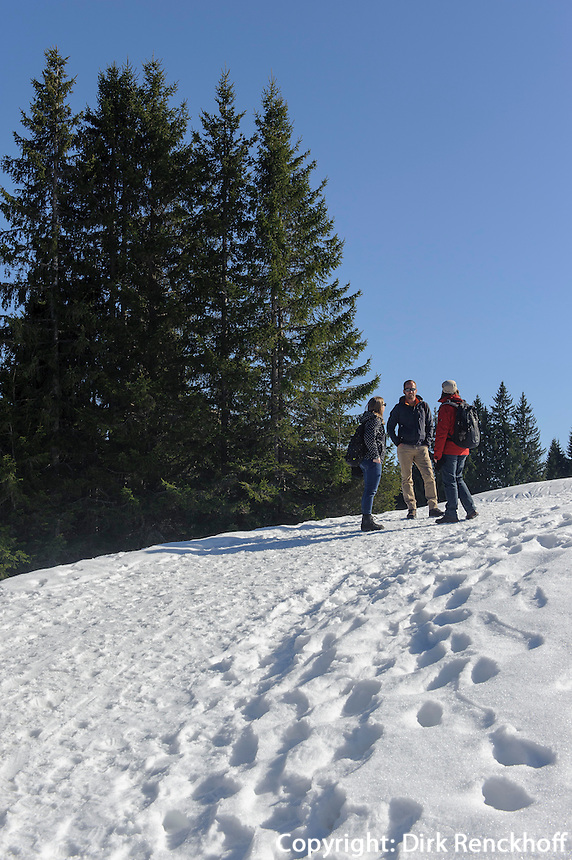 Wanderweg am Ofterschwanger Horn im Allg&auml;u, Bayern, Deutschland<br /> hiking trail at  Ofterschwanger Horn, Allg&auml;u, Bavaria, Germany