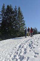 Wanderweg am Ofterschwanger Horn im Allgäu, Bayern, Deutschland<br /> hiking trail at  Ofterschwanger Horn, Allgäu, Bavaria, Germany