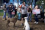 Uruguay / Montevideo / 2017<br /> Manifestaci&oacute;n contra el chipeo obligatorio de perros en Plaza Independencia frente a la Torre Ejecutiva. Montevideo, 11/10/2017.<br /> Foto: Ricardo Ant&uacute;nez / adhocFOTOS