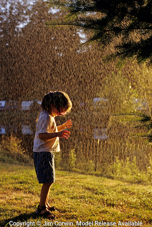 Young girl ( 4 years) playing in water spray during the summer at an RV park Bothell Washington State USA   MR