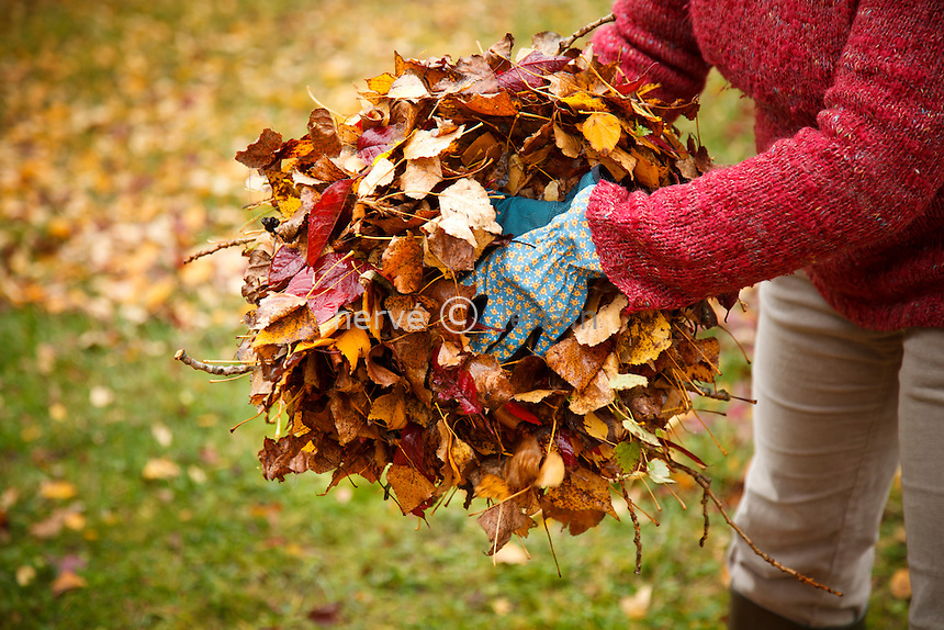 ramassage des feuilles en automne // raking leaves in autumn
