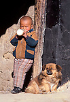 In Lhasa a child drinks milk in the company of the family dog. The most well known Tibetan dog breed is the small Lhasa apso, once bred in Buddhist monasteries as a sentinal dog, Tibet, China.