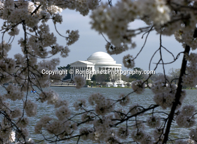 Thomas Jefferson Memorial Washington DC, The Thomas Jefferson Memorial, Jefferson memorial, Presidential Memorial in Washington DC, Thomas Jefferson, American founding Father, Third President of the United States, neoclassical, Designed by John Russell Pope, Philadelphia, done, portico, Tidal, Basin, Potomac River, West Potomac Park, Washington monument, National Mall and Memorial Parks, List of America's Favorite Architecture, American Institute of Architects, U.S. National Register of Historic Places, U.S. National Memorial, Washington D.C., Ron Bennett Photography, Stock Photography, Fine Art Photography, Washington DC, Politics in the United States, Presidential, Federal Republic, united States Congress, Fine Art Photography by Ron Bennett, Fine Art, Fine Art photo, Art Photography,