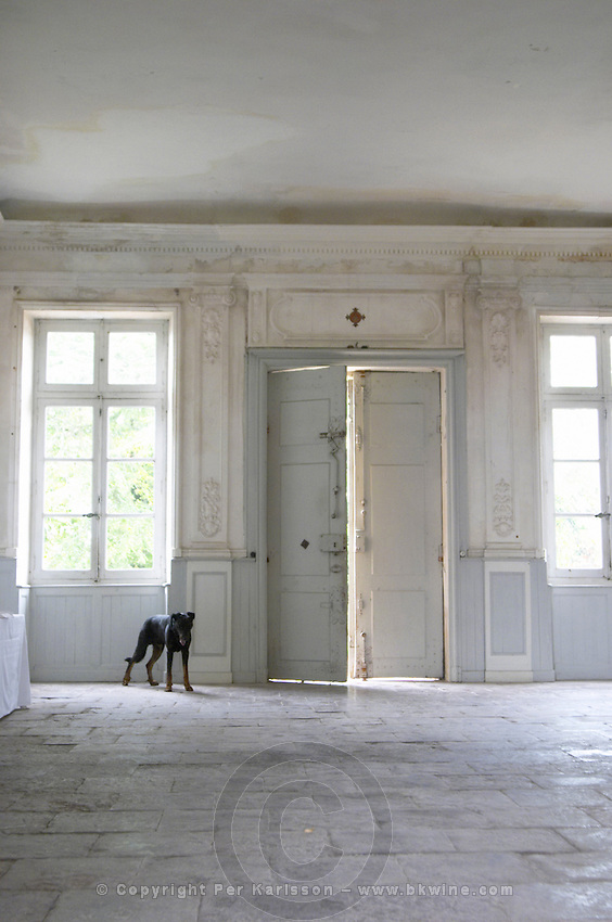 In the stately entrance hall: Stone floor, walls painted white and soft sun light shining in through the windows. Old door slightly ajar with a black dog on guard Chateau de Cerons (Cérons) Sauternes Gironde Aquitaine France