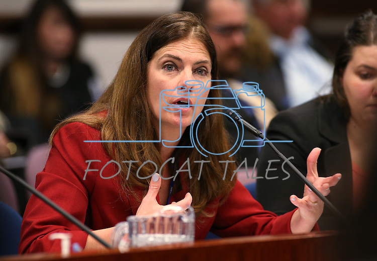 Nevada Assemblywoman Shelly Shelton, R-Las Vegas, works in committee at the Legislative Building in Carson City, Nev., on Tuesday, March 3, 2015. <br /> Photo by Cathleen Allison
