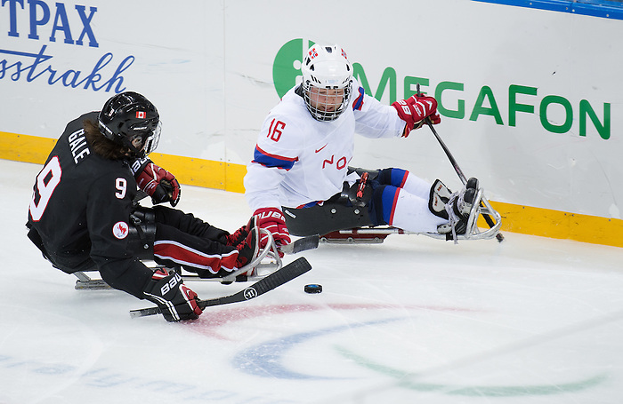 Sochi, RUSSIA - Mar 9 2014 -  Anthony Gale goes for a check during Canada vs. Norway at the 2014 Paralympic Winter Games in Sochi, Russia.  (Photo: Matthew Murnaghan/Canadian Paralympic Committee)