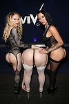 Vivid Cabaret New York Lingerie Party