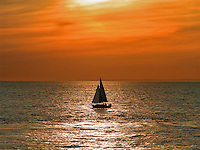 Sunset Sailing In Orange County On The Pacific Ocean