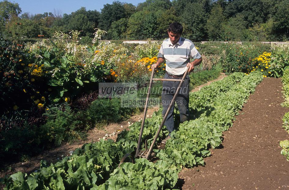 Europe/France/Ile-de-France/91/Essonne/Courson-Monteloup: Jardinier dans le jardin potager [Non destiné à un usage publicitaire - Not intended for an advertising use]
