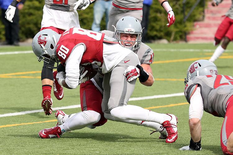 Peyton Pelluer (#47) wraps up receiver Dom Williams (#80) during the annual Washington State Cougar spring game, the Crimson and Gray game, at Joe Albi Stadium in Spokane, Washington, on April 25, 2015.