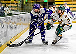 16 February 2019: Holy Cross Crusader Forward Julie Matthias, a Senior from Thornton, CO, is checked by University of Vermont Catamount Forward Ève-Audrey Picard, a Junior from Longueuil, Québec, during a game at Gutterson Fieldhouse in Burlington, Vermont. The Lady Cats defeated the Crusaders 4-1 to sweep their 2-game weekend series. Mandatory Credit: Ed Wolfstein Photo *** RAW (NEF) Image File Available ***