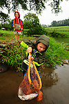 Two young boys netting a fish while fishing in a pond in the summer in northeast PA in the rain.