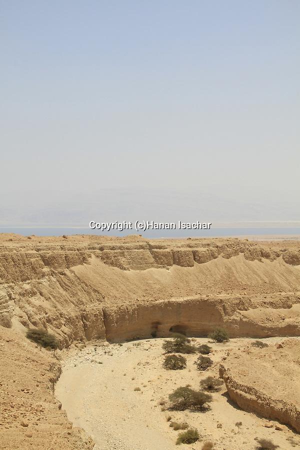 Israel, Wadi Zeelim in the Judean desert, the Dead Sea is in the background