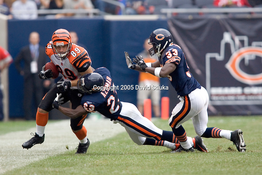 Defensive backs Jerry Azumah #23 and Charles Tillman #33 of the Chicago Bears force tight end Matt Schobel of the Cincinnati Bengals out of bounds at Soldier Field on September 25, 2005 in Chicago, Illinois. The Bengals defeated the Bears 24-7. (Photo by David Stluka)