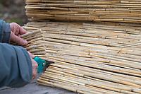 Schilf-Nisthilfe, Nisthilfe aus Schilf, Schilfhalm, Schilfhalmen. Schritt 1: Schilfmatte wird mit einer scharfen Gartenschere in Streifen zerschnitten. Anschließend werden die Schilfhalm-Rollen in eine Holzkiste, Kiste gefüllt. Wildbienen-Nisthilfen, Wildbienen-Nisthilfe selbermachen, selber machen, Wildbienenhotel, Insektenhotel, Wildbienen-Hotel, Insekten-Hotel