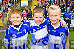 Tiernan O'Sullivan, Gary O'Riordanm and Ordhran Ferris, pictured at the Ardfert v Lixnaw hurling final on Sunday.