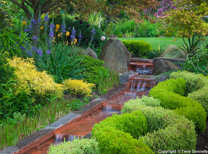 Vashon Island, Washington<br /> Garden viewe of a boxwood knot garden and terraced waterfall