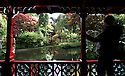 12/10/12 ..The view of the Chinese Garden at the National Trust's  Biddulph Grange Garden, near Stoke on Trent, Staffordshire as Autumn colour explodes in life.. .All Rights Reserved - F Stop Press.  www.fstoppress.com. Tel: +44 (0)1335 300098.Copyrighted Image. Fees charged will reflect previously agreed terms or space rates for individual publications, states or country.