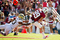 Stanford, CA -- October 19, 2013:  Stanford's Devon Cajuste during a game against UCLA at Stanford Stadium. Stanford defeated the Bruins 24-10.