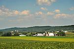Union county farmscape in July.