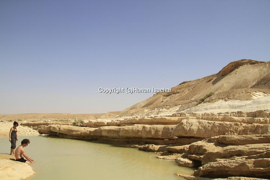 Israel, Negev, waterhole in wadi Zin