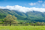 Clearing clouds in Cades Cove, Great Smoky Mountains National Park, Tennesee, USA