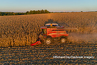63801-12402 Harvesting corn in fall-aerial  Marion Co. IL