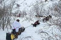 Rick Swenson & Paul Gebhardt run down a narrow draw on Pass Creek after reaching the summit of Rainy Pass in the Alaska Range on his way to Rohn during Iditarod 2009