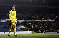 Reading's Anssi Jaakkola<br /> <br /> Photographer Rich Linley/CameraSport<br /> <br /> The EFL Sky Bet Championship - Leeds United v Reading - Tuesday 27th November 2018 - Elland Road - Leeds<br /> <br /> World Copyright © 2018 CameraSport. All rights reserved. 43 Linden Ave. Countesthorpe. Leicester. England. LE8 5PG - Tel: +44 (0) 116 277 4147 - admin@camerasport.com - www.camerasport.com
