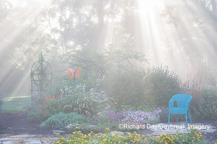 63821-23703 Sun rays in fog in flower garden, Marion Co., IL