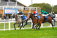 Winner of The Meachers Global Classic Supporting Gift Of Sight Handicap, Gwafa ridden by Fergus Sweeney and trained by Paul Webber during Evening Racing at Salisbury Racecourse on 3rd September 2019