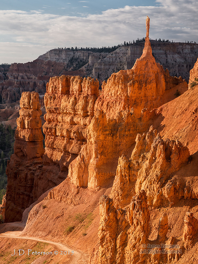 Along the Trail at Bryce Canyon