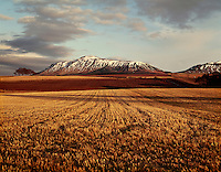 .A winter view of the Lomond Hills across stubble-fields in late afternoon light, Fife, Scotland..