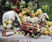 Carl, CUTE ANIMALS, teddies, photos, teddies, yellow roses(SWLA2015,#AC#)